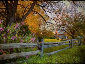 country fence Wallpaper__yvt2