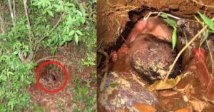 This Baby was buried in a Muddy Hole for 24 Hours and Was Left to Die—But He Miraculously Survived!