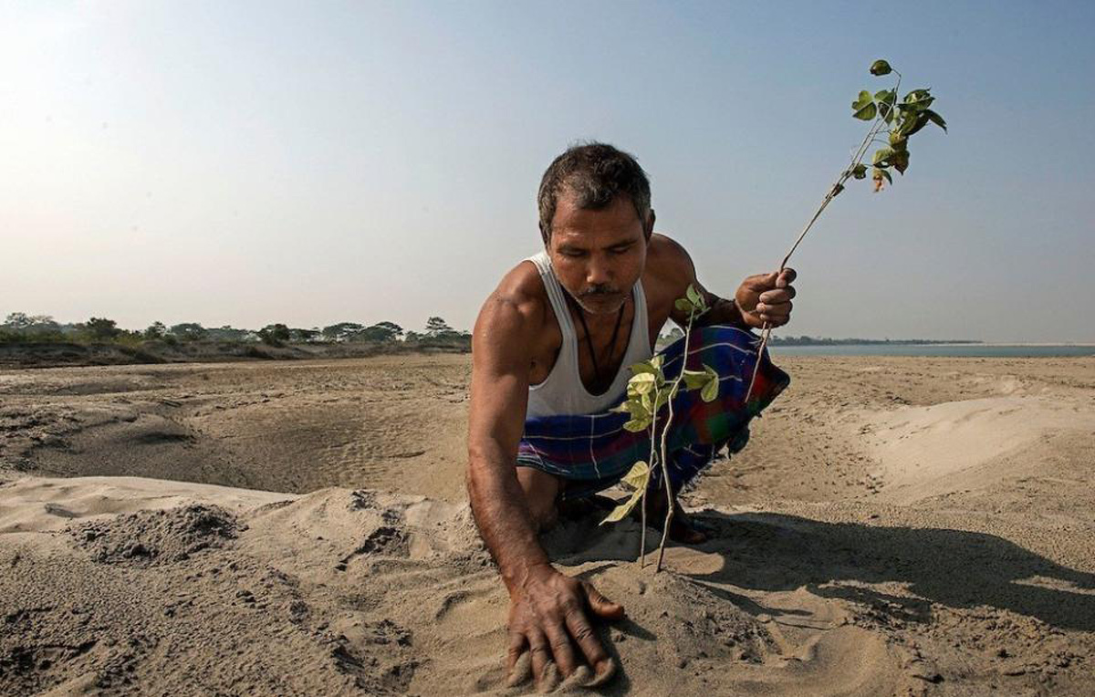 He planted a tree in a desert every day. You won't believe how it looks 37 years later
