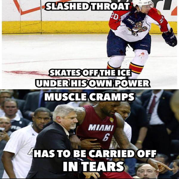 Funny-Hockey-Meme-Picture