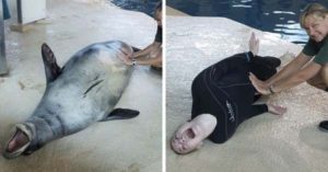 10  Hilarious Pics That Show What Happens When Zookeepers Have Too Much Time On Their Hands
