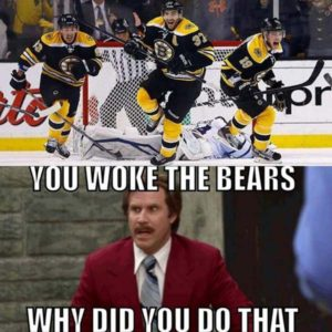 You woke the bears