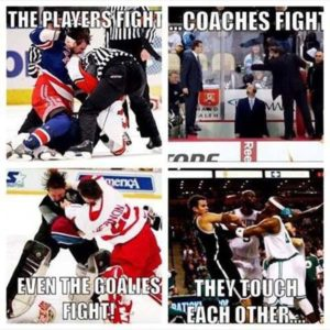 Fans fight… Just reasons why hockey is the best sport ever